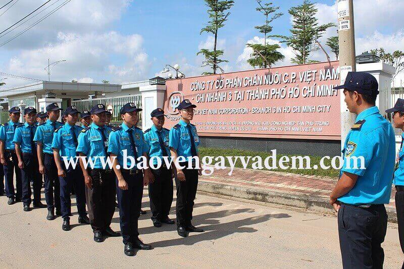 Cung cấp dịch vụ bảo vệ chuyên nghiệp cho Tập đoàn CP Vietnam